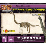 Re-ment Pose Skeleton Dinosaur Series 104: Brachiosaurus