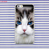 Lavaza Black Cat Staring Eyes Hard Coque Shell Phone Case for Apple iPhone 8 7 6 6S Plus X 10 5 5S SE 5C 4 4S Cover