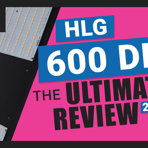 The Ultimate Horticulture Lighting Group HLG-600 Quantum Board LED Kit V2 Review