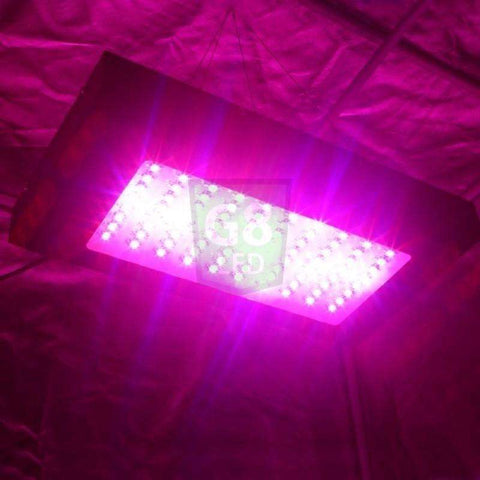 G8 LED 240 Watt Full Spectrum Veg/Flower Plant LED Grow Light - Right Bud