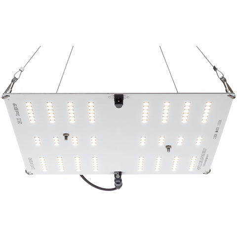 Horticulture Lighting Group HLG 65 Quantum Board QB120 (DIY)