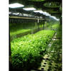 Image of Apache Tech AT600 LED Grow Light