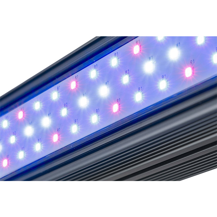 Kind LED X-Series XD75 / XD150 Bar Light