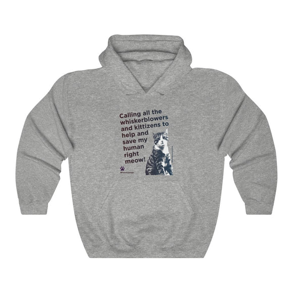 Julian's Cat - Hooded Sweatshirt