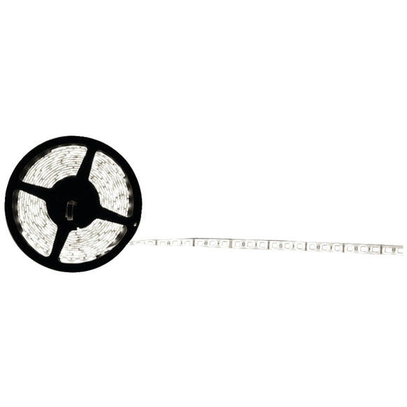 Ethereal(R) CS-CW5050 5050 LED Strip, 16.4ft (Cool White)