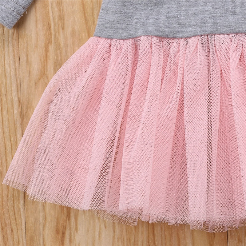 Baby Girl Long Sleeve Heart Lace Tutu Tulle Dress