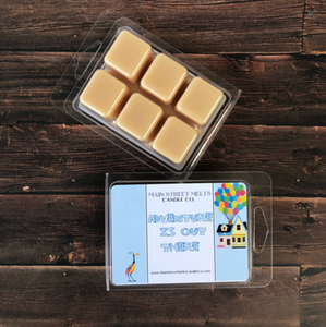 ADVENTURE IS OUT THERE Soy Wax Melt