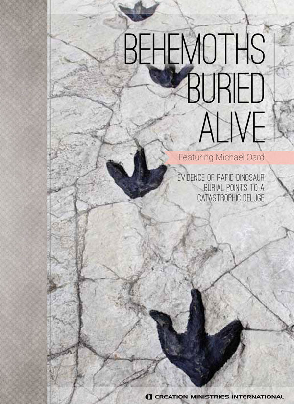 Behemoths Buried Alive DVD