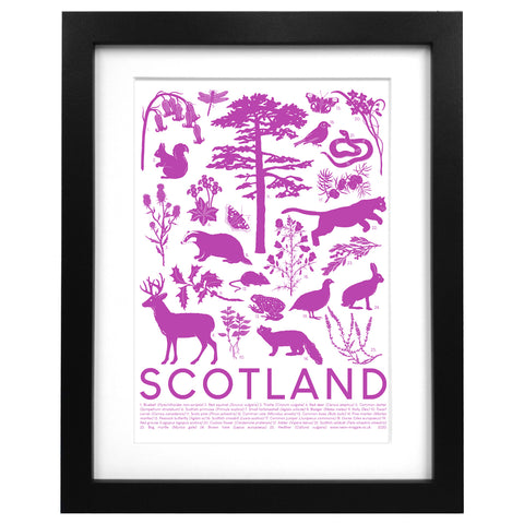 Scottish Wildlife Screen Print
