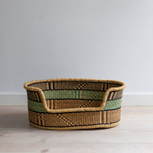 Pet Basket - Small - TURTLE
