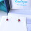Titanium 3mm Ruby Stud Earrings