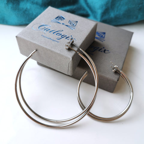 products/titanium_hoops_1.jpg