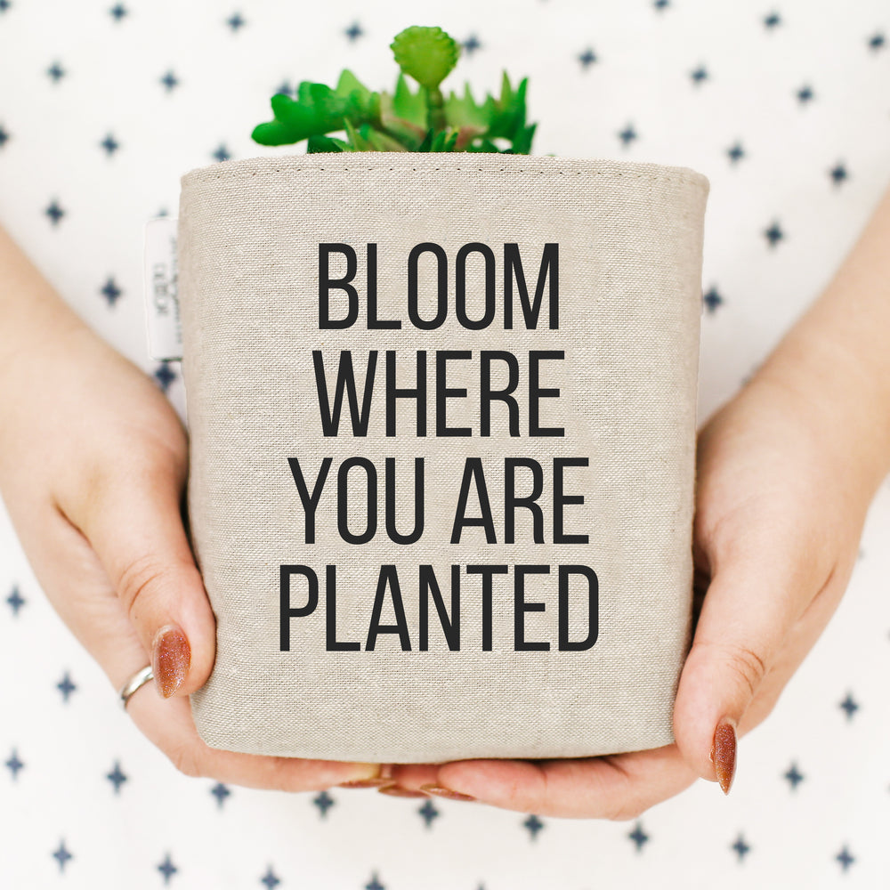 BLOOM PLANTED