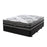 Albertine Extra Firm Mattress | NZ Made - The Furniture Store & The Bed Shop