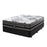 Albertine Plush Mattress | NZ Made - The Furniture Store & The Bed Shop