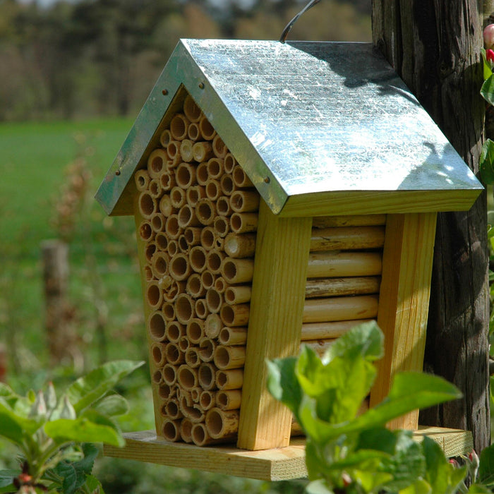 Bee House with Metal Roof - The Furniture Store & The Bed Shop