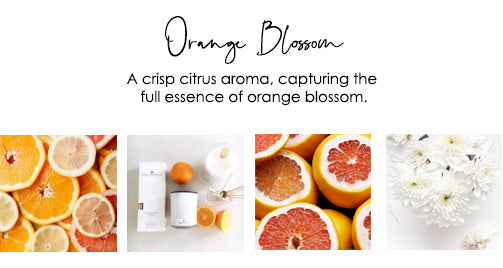 fruity-fragrance-orange