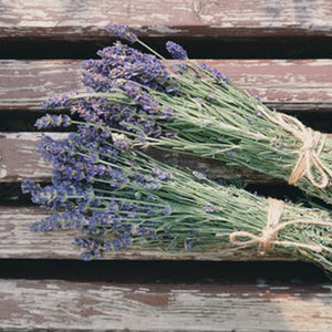Lavender 15ml Oil-Oil Diffuser-Angel Aromatics