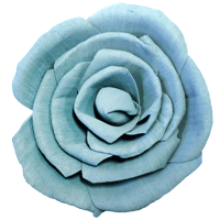 Balsa Wood Flowers Rose - Click here for colours-Flowers-Angel Aromatics