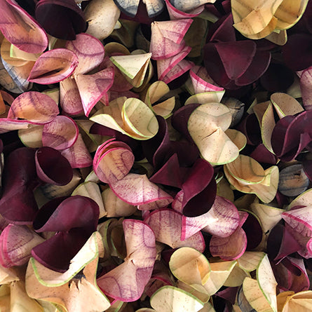 Curls 100g Marthas Vineyard-Potpourri-Angel Aromatics