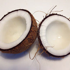 Coconut 15ml Oil-Oil Diffuser-Angel Aromatics