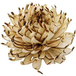 Balsa Wood Ivory Spiky Cactus-Flowers-Angel Aromatics