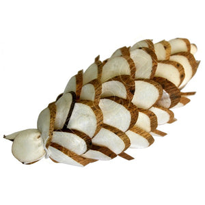 Balsa Wood Ivory Denver Pine Cone-Flowers-Angel Aromatics