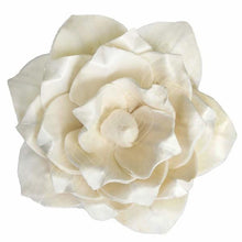 Balsa Wood Flowers Margot - Click here for colours
