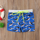 Boys Shark Shorts