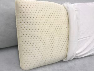 Latex Foam Pillow With Cover