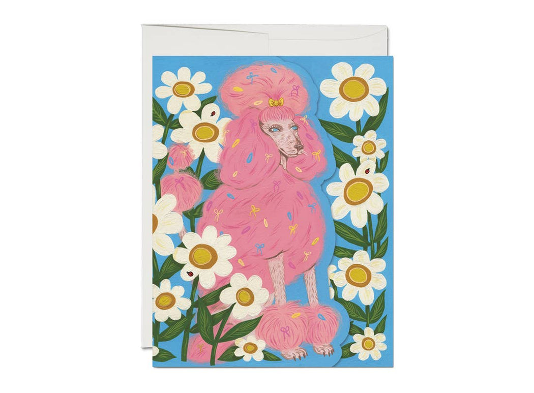 """Pink Poodle"" Greeting Card"