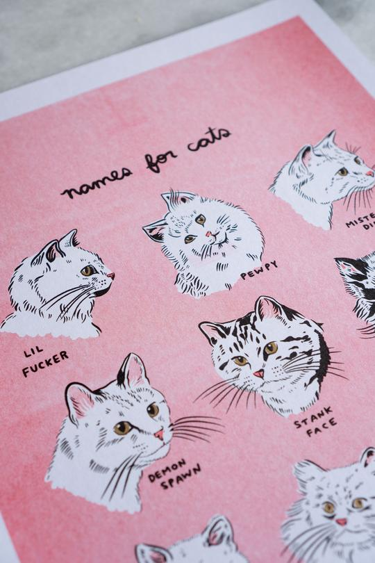 Names for Cats Riso Print