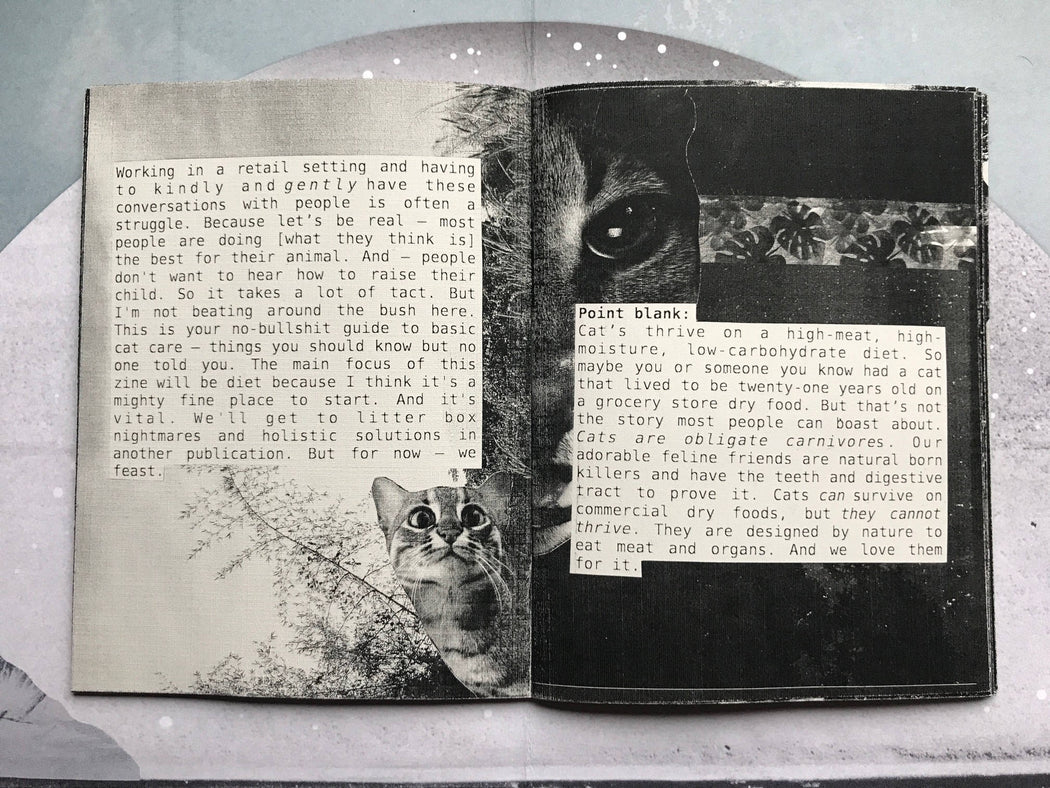 The Cat Zine Your Cat Wants You To Read.