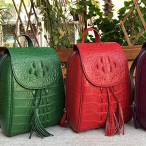 Ladies Luxury Backpacks,