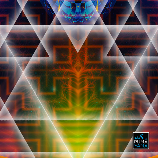 flower of life poster-3