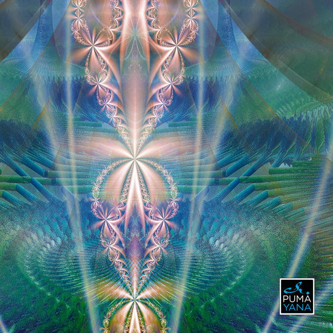 Elora Portal Cosmic Art Print | Canvas | Mandala | Shamanic Art | Meditation | Spiritual | Sacred Geometry | Visionary | Psy | Art