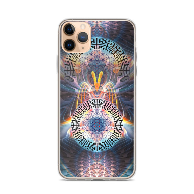 Cosmic iPhone 11 Pro case
