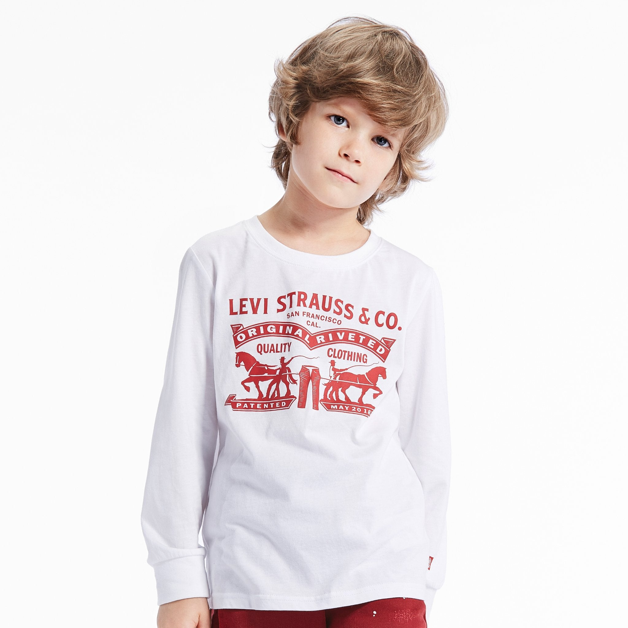 Levi's Long Sleeve Graphic Tee - rookiehk