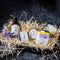 Mothers Day Pamper Hamper with a Tasmanian Gin