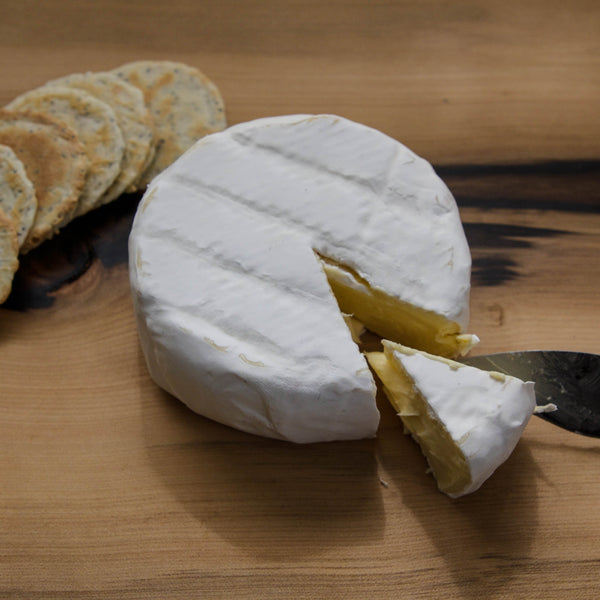 Wicked Cheese Camembert - Tasmanian Gourmet Online