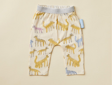 Katt Dance Leggings (18-24m)
