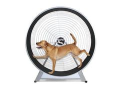 GoPet CS8022 Large Breed Dog TreadWheel