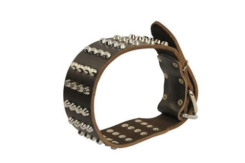 Dean and Tyler 4 Row Spikes Brass Spiked Collar DTC4-B