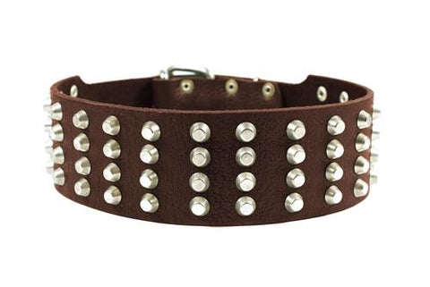 Dean and Tyler 4 Row Studs Brass Studded Collar DTC94-B