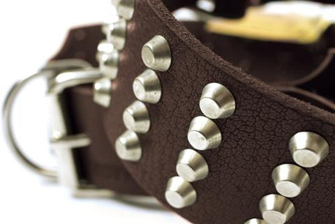 Dean and Tyler 4 Row Studs Nickel Buckle and Brass Studded Collar DTC94-NB