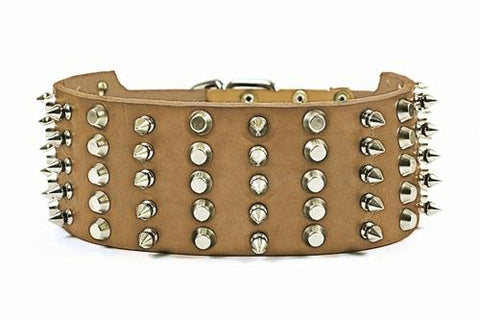 Dean and Tyler Wide Heaven Brass Spiked Collar DTC5-C-B