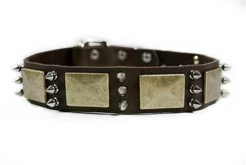Dean and Tyler Beauty and The Bold Brass Spiked Collar DTC84-B