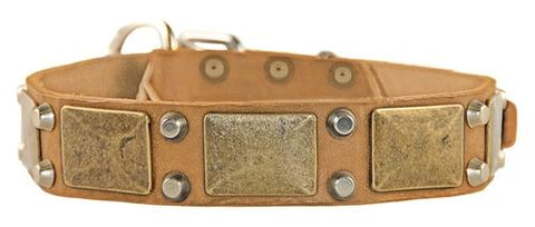 Dean and Tyler The Antique Brass Leather Collar DTC85-B