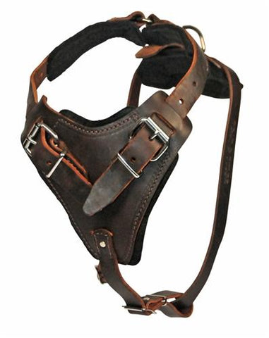 Dean and Tyler The Boss With Handle Leather Harness DTH1