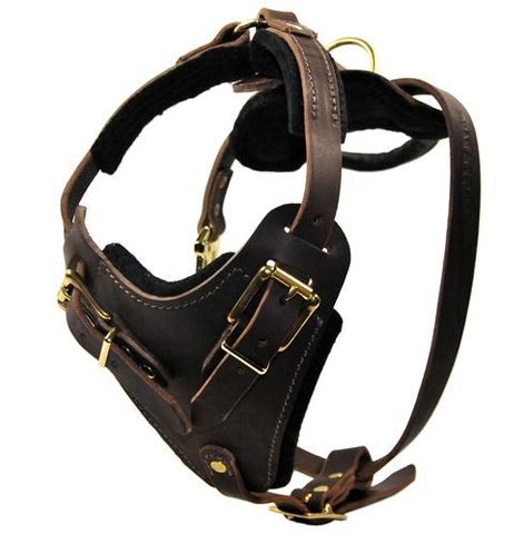 Dean and Tyler The Boss Without Handle Leather Harness DTH1-NH